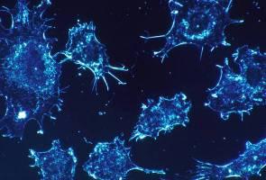 Satu dari setiap enam kematian disebabkan kanser