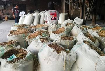 Pengilang padi Medan impikan masa depan yang lebih baik