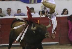 Matador cedera parah skrotum dirodok tanduk lembu