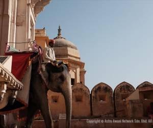 Menelusuri Tanah Raja-Raja, Rajasthan