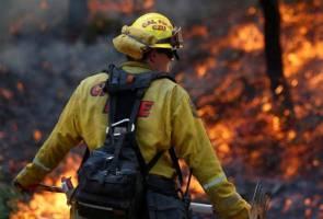 Api marak terus mamah California
