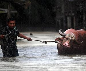 Banjir di Pahang