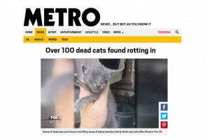 Lebih 100 kucing ditemui mati reput dalam rumah pasangan warga emas