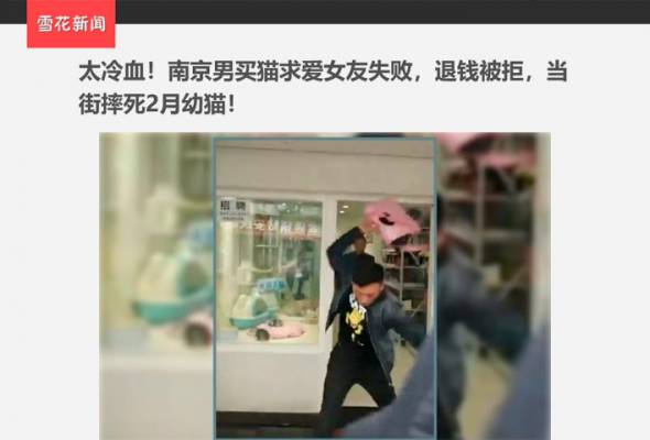 Kerana berang akibat cinta ditolak, seorang lelaki di China telah berkali-kali menghempas seekor anak kucing berusia dua bulan sehingga mati