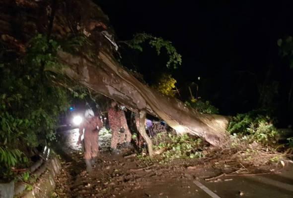 Keadaan hujan lebat dan angin kencang kira-kira 8.45 malam itu mengakibatkan pokok tumbang di Balik Pulau dan Teluk Bahang. - Foto JBPM | Astro Awani
