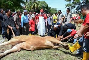 Yang di-Pertuan Agong berkenan menyembelih lembu korban