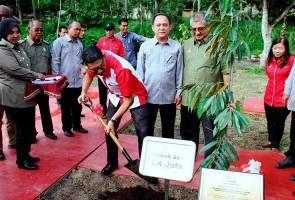 Perak hasrat laksanakan program Pokok Angkat