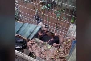 Mayat tangan berikat ditemukan di PPR Jalan Peel