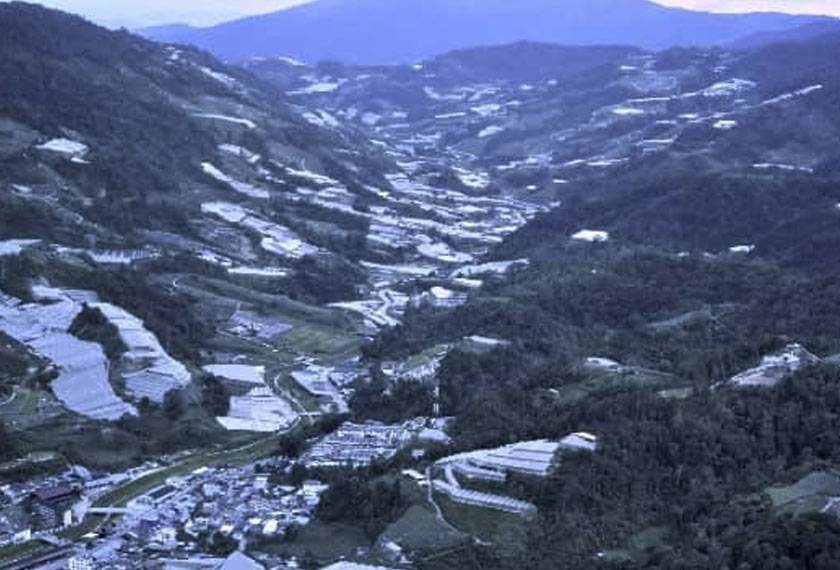 Intensive land use for agriculture is a feature of Cameron Highlands development.