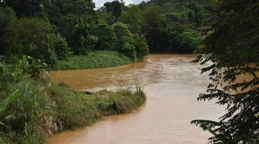 Sungai Nenggiri sudah keruh dan berkeladak seperti kopi susu. Ikan sudah tidak lagi dutemui dan airnya tidak boleh diminum. – Foto: Ceritalah