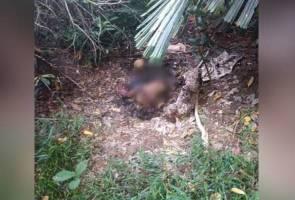 Mayat kanak-kanak perempuan ditemui dengan tangan terikat tanpa seluar