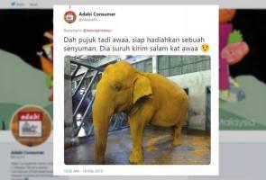 Gajah goreng kunyit jadi tumpuan media sosial 2