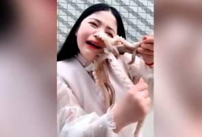 Wajah wanita disedut sotong ketika cubaan dimakan hidup-hidup