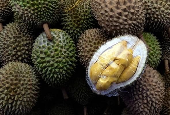 Polis Hawaii buru pencuri, larikan buahan-buahan bernilai lebih RM4,000