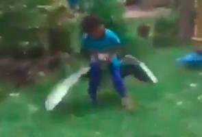 Video tular kanak-kanak berani smack down angsa garang 2