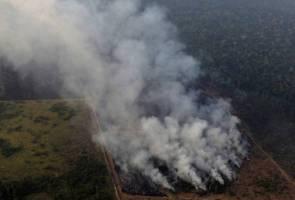 Hutan hujan Amazon terus terbakar, jutaan spesies istimewa berdepan kemusnahan