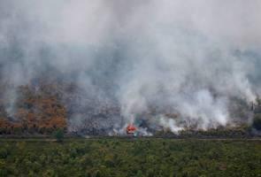 Jerebu: Henti tuding jari kepada pengeluar minyak sawit, negara membangun - CPOPC