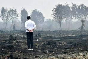 Jokowi 'turun padang' periksa kawasan kebakaran hutan di Riau