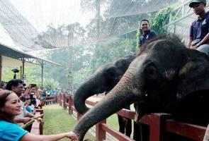 Santuari gajah RM20 juta tangani konflik gajah dan manusia
