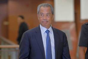 Muhyiddin dipecat kerana persoal 1MDB - Ali Hamsa