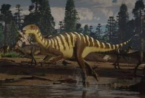 Fosil dinosaur tidak bergigi dijumpai di Australia