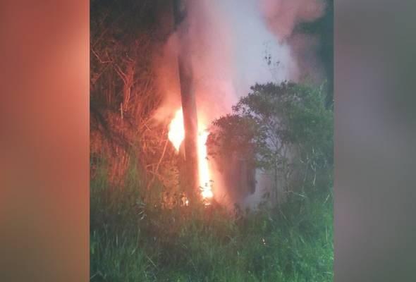 Kereta terbakar akibat langgar lembu, 5 sekeluarga nyaris maut