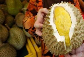 Gerai jualan durian diberi kebenaran beroperasi di Pulau Pinang