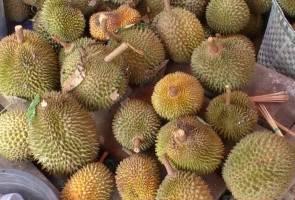 Harga durian perlu dikawal agar pengguna tidak terus tertipu - PPMM