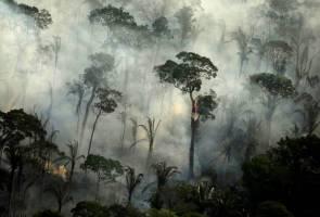 Kemusnahan Amazon: Syarikat gergasi Brazil bergabung desak tindakan segera
