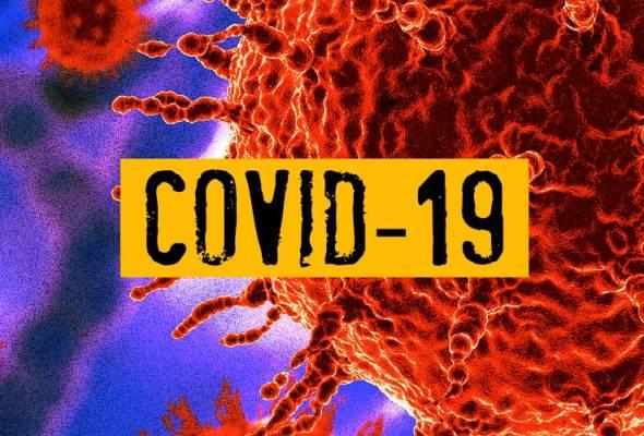 COVID-19: Data dan informasi setakat ini (Dikemas kini setiap hari)